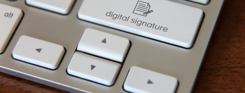 Explorando la frontera digital